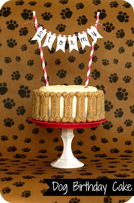 Dog Birthday Cake - totally making this on Monday for Maddie's birthday!!,
