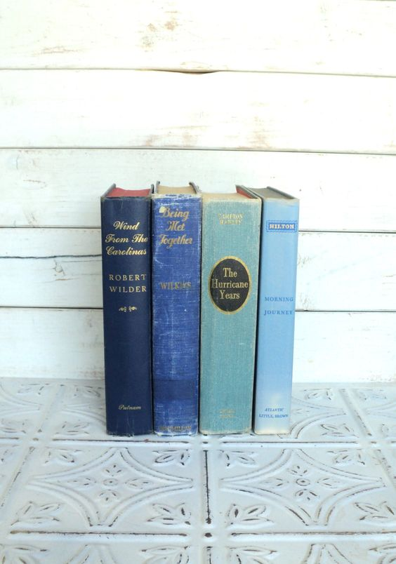 Blue Books Ombre Instant Library Collection Decorative Vintage Book Bundle Photography Props Shades of Blue. Coastal, Ocean. , via Etsy.