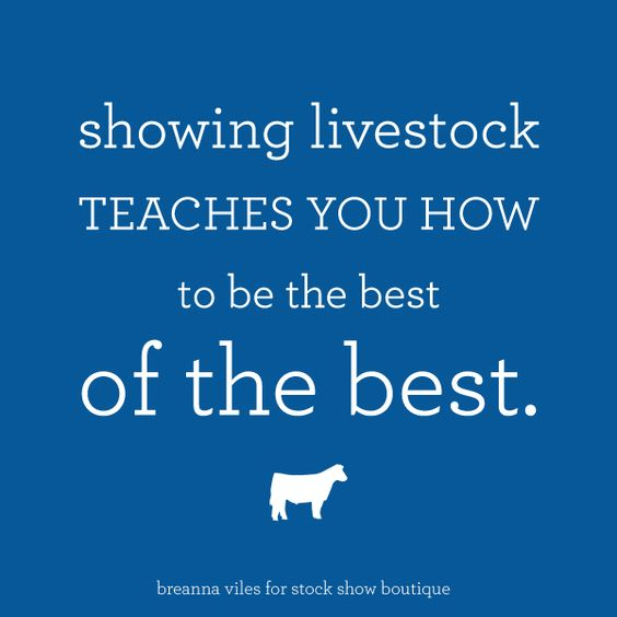 What Showing Livestock Teaches Kids? – Stock Show Boutique