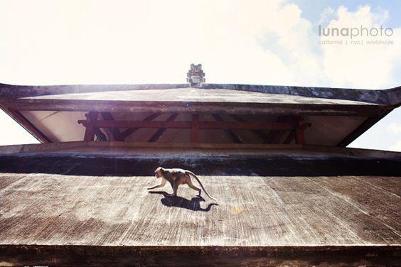 Lunaphoto destination wedding Bali