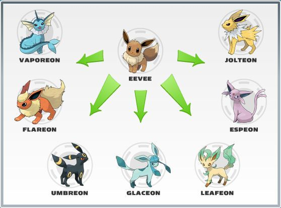 Pokemon Vulpix Evolution | eevee and its evolutions from ...