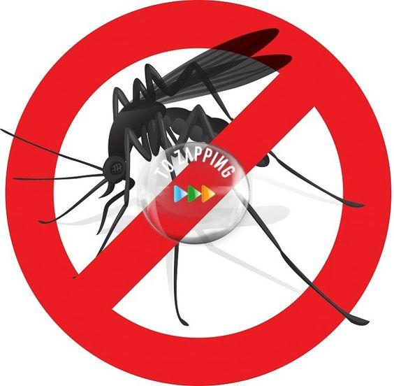 Cómo hacer un repelente de mosquitos casero Con alcohol, clavos de olor y aceite de bebé