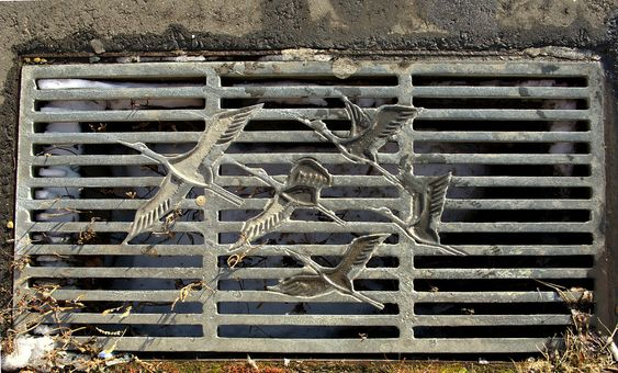 A drain in Kushiro, Hokkaido, which is near crane reserve (Photo by Janne Moran via Flickr Commons): Japanese Art, Drain Kushiro, Japanese Manhole Covers, Janne Moran, Crane Reserve, Cover Art, Drain Covers