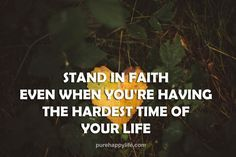 #quotes - stand in f      #quotes  - stand in faith even....more on  purehappylife.com   https://www.pinterest.com/pin/445082375652079746/   Also check out: http://kombuchaguru.com