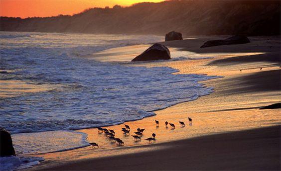 Beaches....