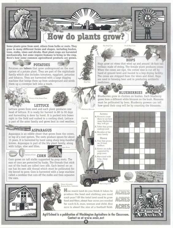 Agriculture Worksheets - Versaldobip