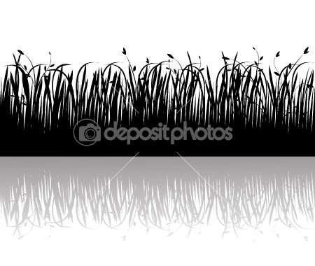 Grass silhouettes vector by vanias - Stock Vector