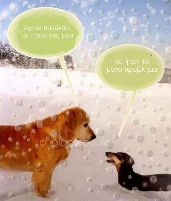 έχουν παγώσει οι πατούσες μου | tο_giagiopoulo