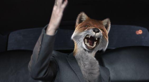 Fox overlord!