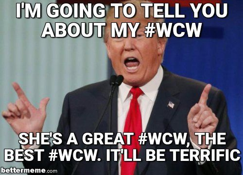 19 Catchy Wcw Meme That You Must Share in 2020 | Memes, Funny memes, Grumpy  cat meme