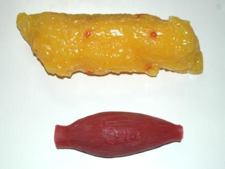 5lbs of fat vs. 5lbs of muscle..