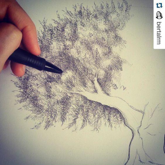 #Repost @bertalrm  Drawing for @anafvg #tree #draw #olivetree #illustration #nekonaku