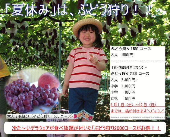 夏休みは、ぶどう狩り。種なし葡萄(デラウェア)のページ