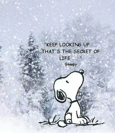 Snoopy's Top 30 Positive Quotes about Life