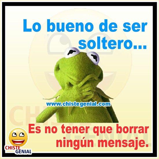 Chistes Cortos Lo Bueno De Ser Soltero Chistes Humor Chistegenial Humor Memes Dinosaur Stuffed Animal