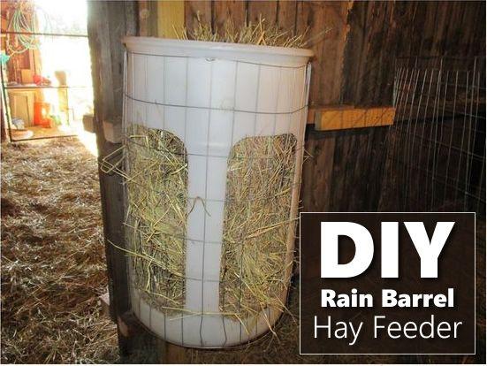 Diy Rain Barrel Hay Feeder Sheep Feeders Goat Hay Feeder Goat Barn