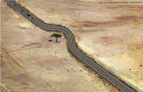 Save Tree ... Respect