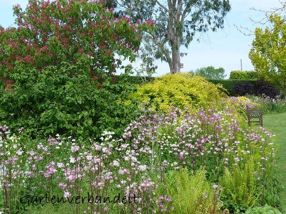 Gartenverbandelt: Merriments Gardens 1. Teil