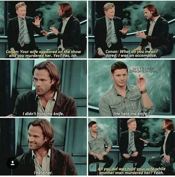 Jared Didn T Technicaly Kill His Wife It Was Jensen Supernatural Funny Supernatural Quotes Supernatural Cast