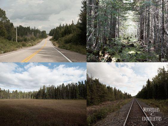 Pourvoirie du triton au Canada -source : Merveilles et coquillettes