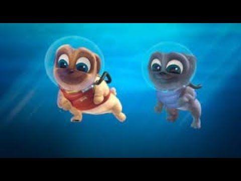 Puppy Dog Pals Disney Junior Puppy Dog Pals New Episodes Cartoons Movie 2018 3 Youtube Cartoon Movies Disney Junior Cartoon