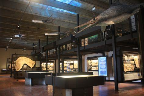 Juramuseum Eichstätt