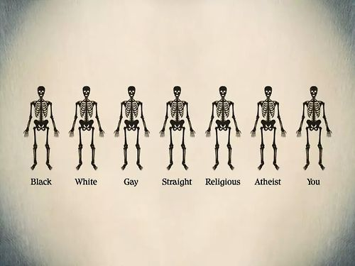 """Image result for """"we are all equal"""""""