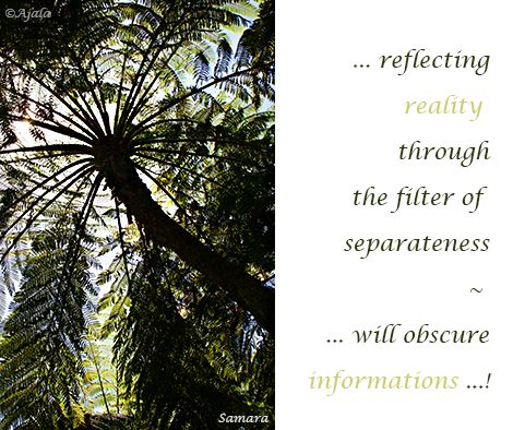 ... reflecting #reality  through the filter of  separateness ~  ... will obscure #informations ...!