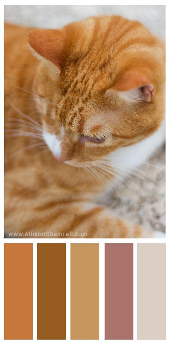 Farb- und Stilberatung mit www.farben-reich.com # #Color Palette #Nature