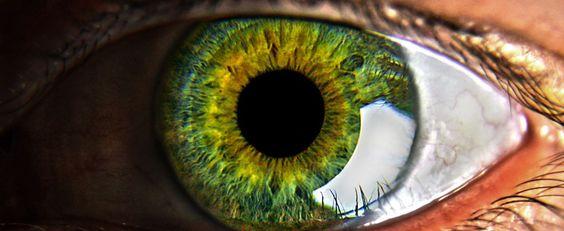 Un ojo de cerca