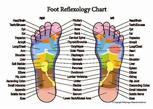 Professional Hand And Foot Reflexology And Acupressure Pocket Guide 25 Pack Reflexology Chart Reflexology Foot Chart Foot Reflexology