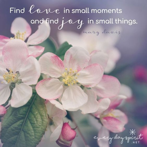 Find JOY in small things. xo Every Day Spirit: A Daybook of Wisdom, Joy and Peace. #Inspirational #spirituality #love #JoyQuotes