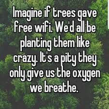 trees wifi meme - Google Search
