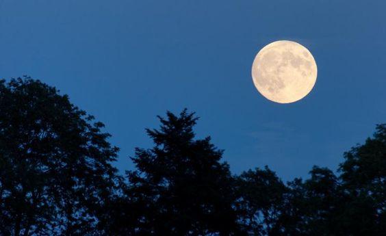 Vollmond Mondkalender