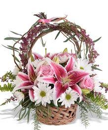 , Walter Knoll Florist -: