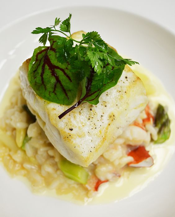... halibut pan roasted and more spring lobsters asparagus dinner halibut