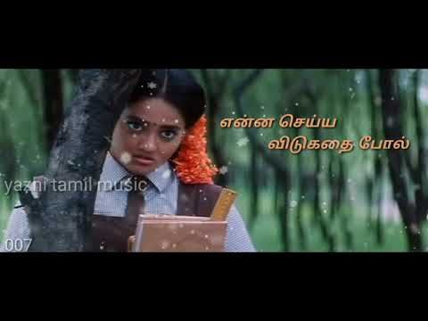 Sollividu Velli Nilave Tamil Lyrics In 2020 Lyrics Songs My Favorite Things