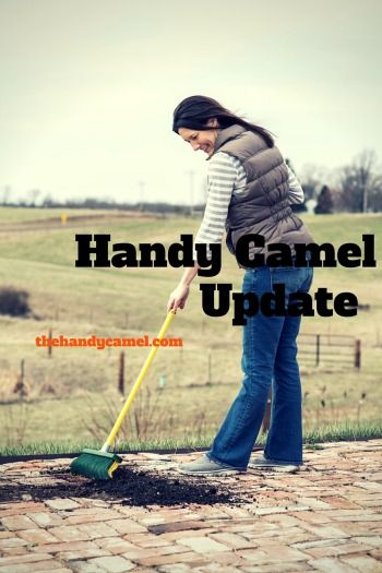 Why we're blogging. Check out the latest update on The Handy Camel!