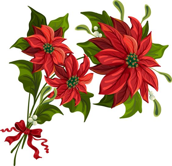 Clip Art Poinsettia Clip Art christmas poinsettia clip art large holiday scrapbook large