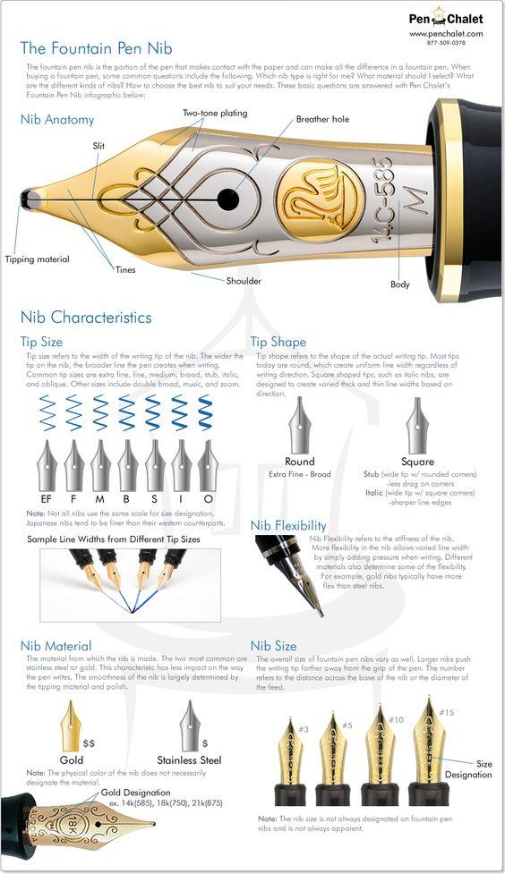 Fountain Pen Nib Infographic