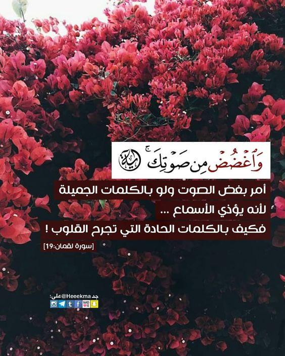 على سبيل الطمأنينة فس ي ك ف يك ه م الله آية وحكمة Quran Quotes Love Quran Quotes Islamic Quotes Quran