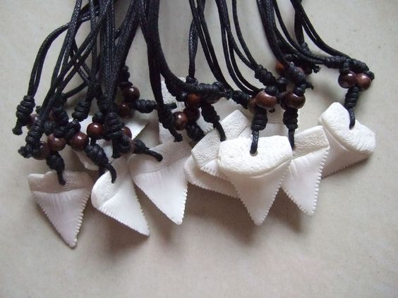 10 Party Favors Faux Shark Tooth Sharks Teeth Necklaces Wholesale