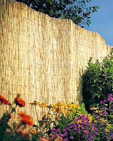 Reed Fences: Backyard Ideas, Outdoor Ideas, Fence Ideas, Garden Ideas, Gardening Outdoors, Gardening Ideas, By Outdoor, Reed Fences