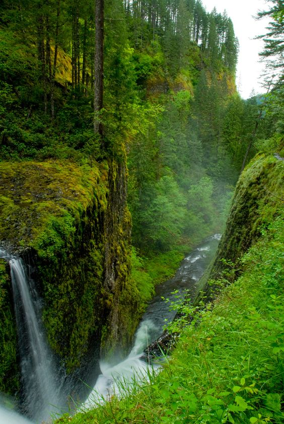 Eagle Creek to Tunnel Falls, OR - hiking blog - portlandhikers