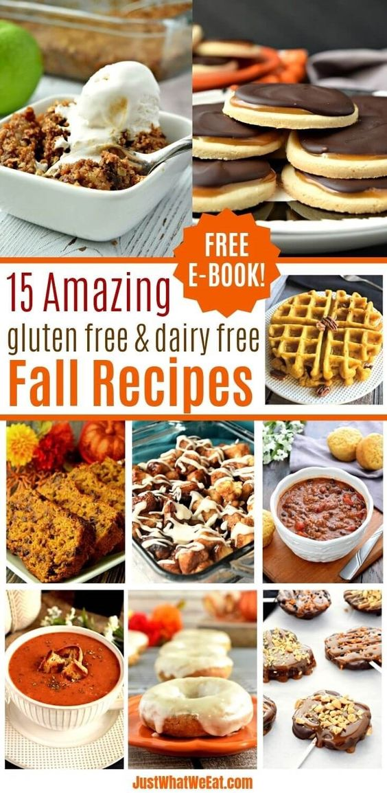 15 Amazing Gluten Free and Dairy Free Fall Recipes - Just What We Eat