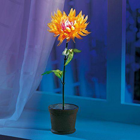 Amazon De Lunartec Solar Blume Solar Blumentopf Kunstliche Pflanze Mit Farbwechsel Led Solar Solarleuchten Garten Sol Blumentopf Pflanzen Kunstpflanzen