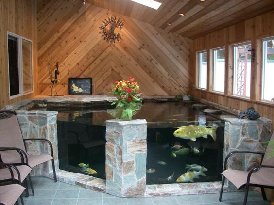 Ashok virath on gardens cutaway and fish for Indoor koi pool