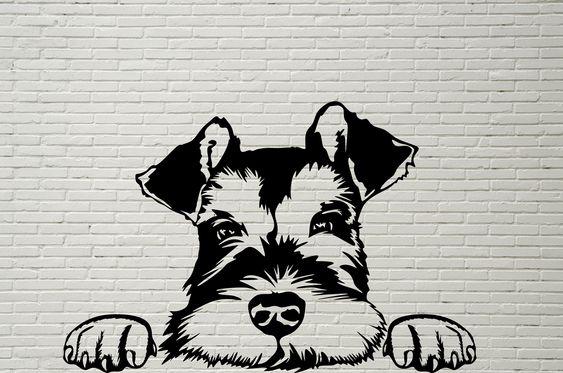 Pin By Maria Luiza On Minhascoisas In 2021 Schnauzer Drawing Dog Peeking Schnauzer Art