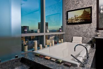 Really nice tub from a condo in Seattle.      I found this pic of a Seattle condo from http://suiteestates.com.