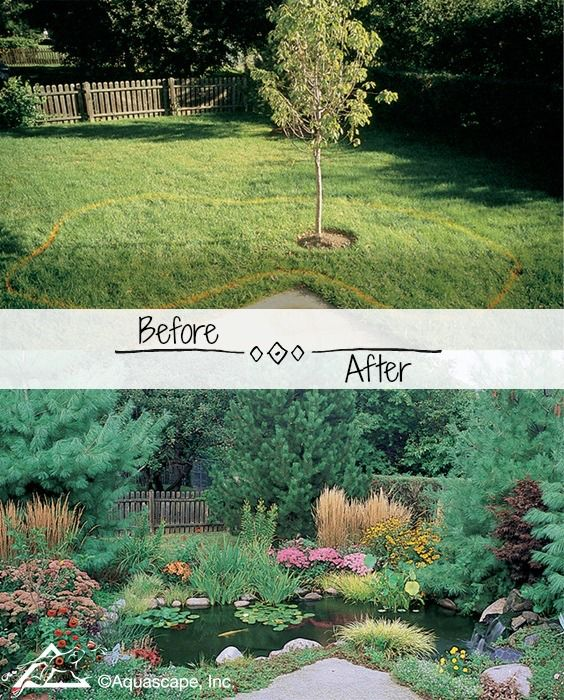 Backyard Transformations Before And After Water